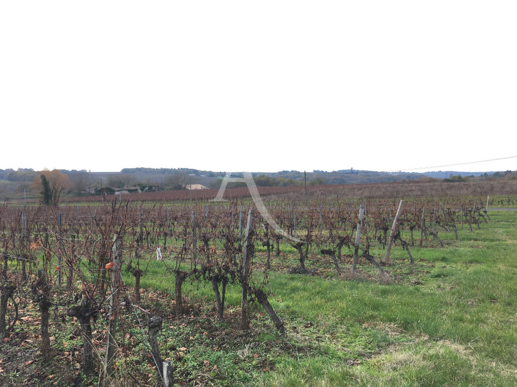 vignes-appellation-bordeaux-4-4-hectares